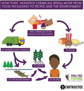 PFAS poisoning explained